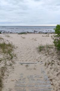 Merenranta Virossa
