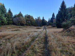 Kävelymaisemia Brentolta