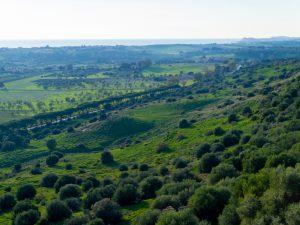 Vehreä Sisilia