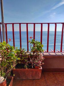 Kukkia ja merinäköala parvekkeella