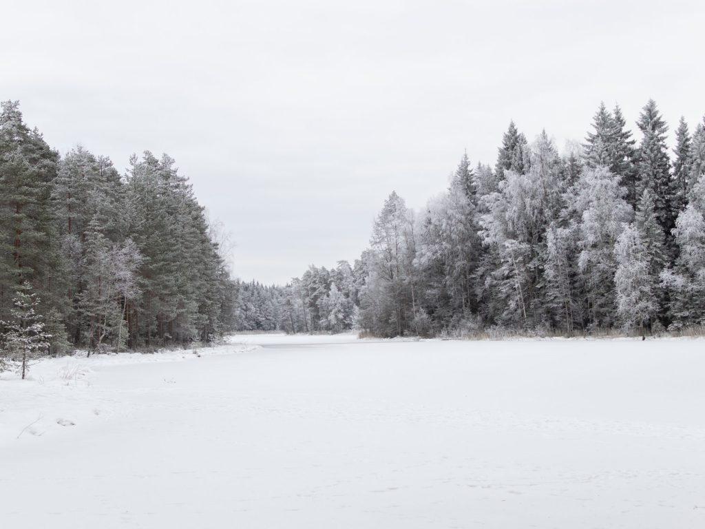 Tammikuu: Birgitan polku