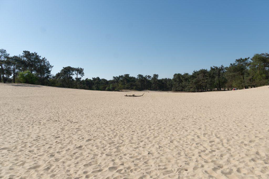 Hiekkaa, hiekkaa. Alankomaiden aavikko on noin puolen tunnin matkan päässä Eindhovenista.